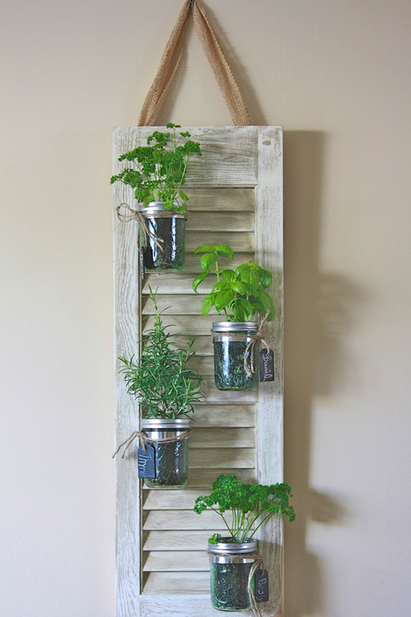 horta na cozinha2